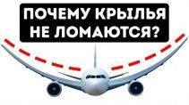 Почему у самолетов крылья не ломаются