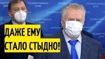 Жириновский о неприкосновенности и сенаторстве