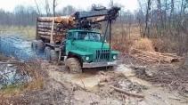 Лесовозы на вывозке леса в тяжелых условиях бездорожья