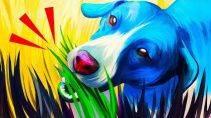 Зачем собаки едят зеленую траву