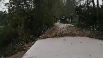 Как быстро очистить двор от листвы