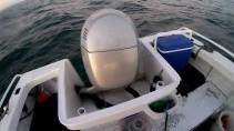 Нарвались на акулу во время рыбалки