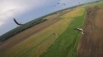 Как подружить свой дрон с аистами