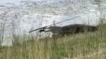 Аллигатор стащил удочку у рыбака