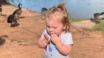 Девочку попросили покормить уток хлебом но что то пошло не так