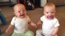 Девочки близняшки дерутся из за соски