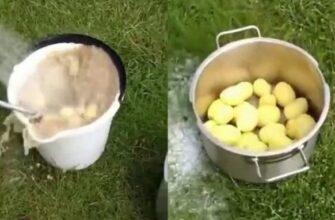 Как легко почистить картофель за 1 минуту