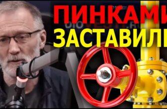 Газификация России и закон о бабушках / Железная логика от 02.06.2021