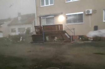 Собака против сильного торнадо в Чехии