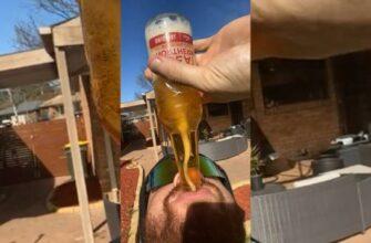 Как пить пиво как профессионал