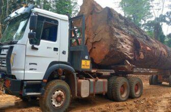 Опасные лесовозы и трелевочные тракторы груженые лесом на грязной дороге