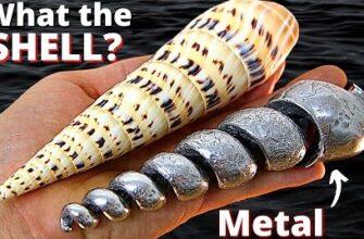Что будет если залить расплавленный металл в ракушку
