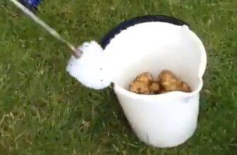 Как почистить ведро картошки за одну минуту