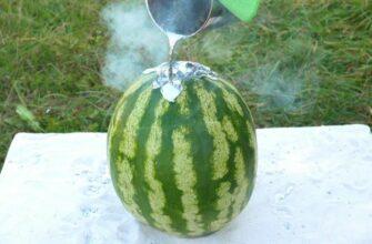 Эксперимент: Жидкий свинец против арбуза