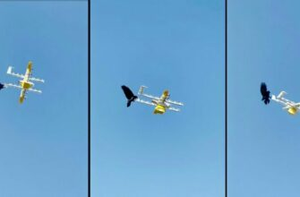 Ворон атаковал дрона-курьера